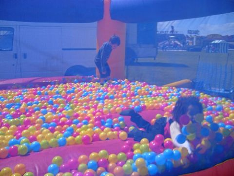 Ball Pond Hire