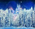 Winter Wonderland Theme Party Hire
